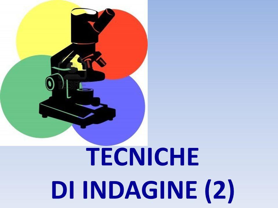 TECNICHE DI INDAGINE (2)