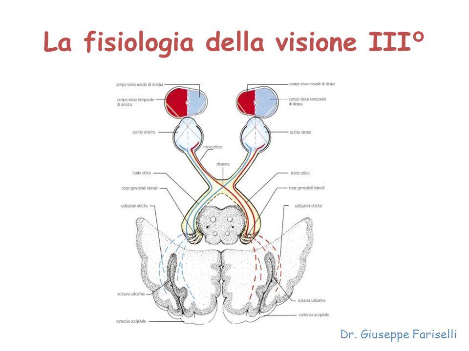 La fisiologia della visione III° Dr. Giuseppe Fariselli