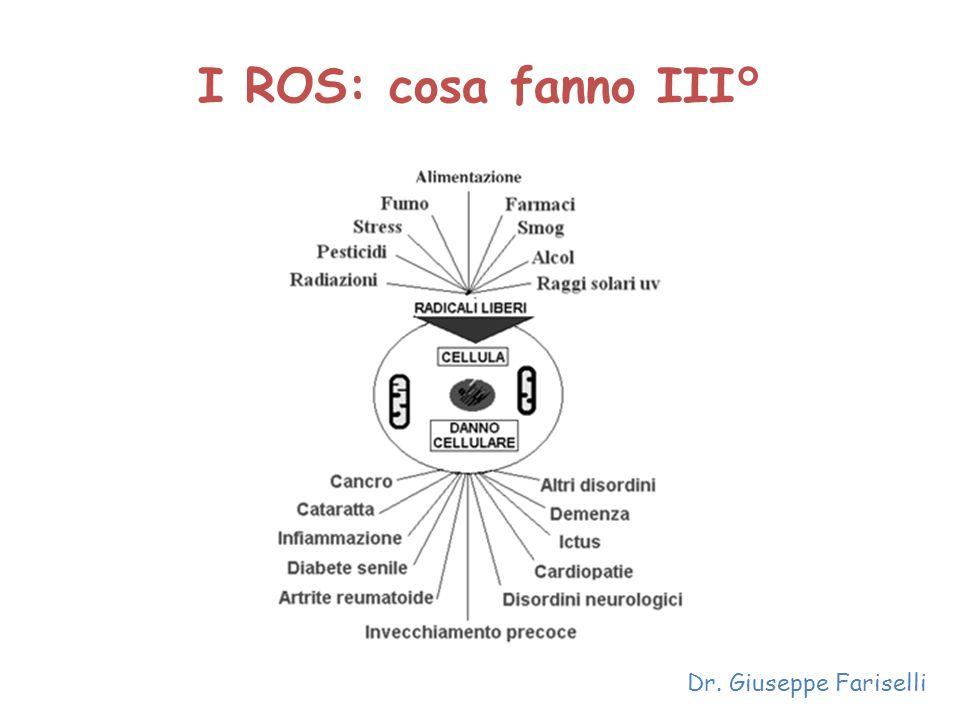 I ROS: cosa fanno III° Dr. Giuseppe Fariselli