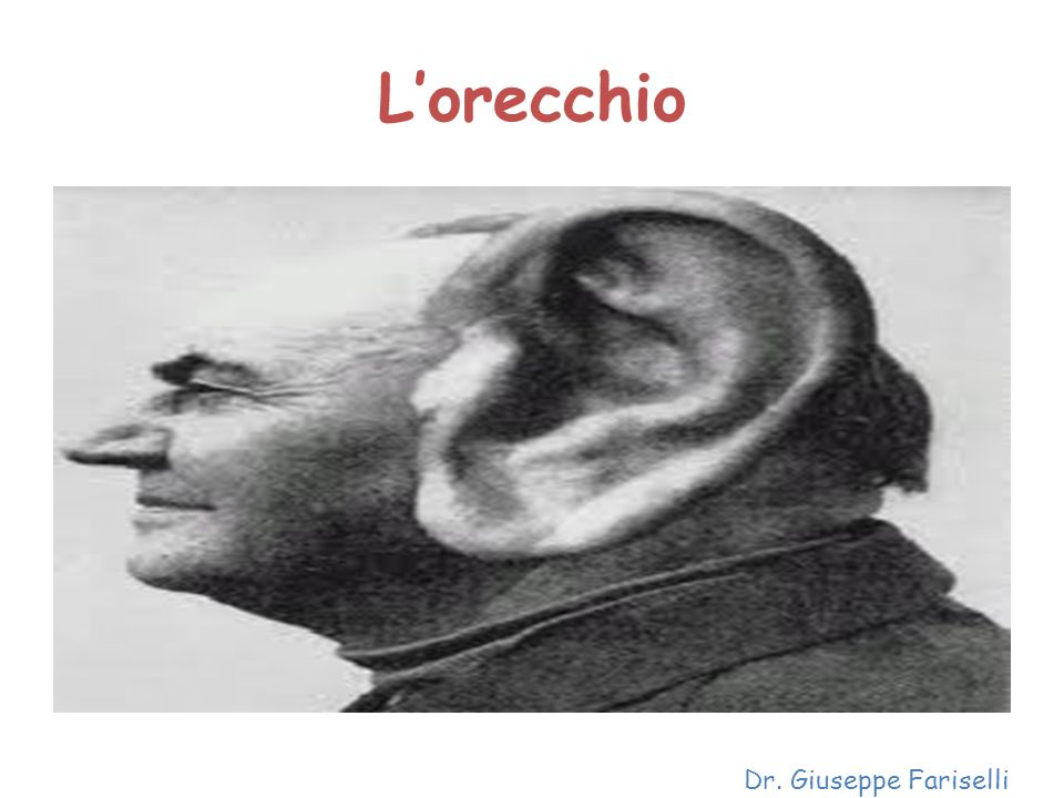Lorecchio Dr. Giuseppe Fariselli