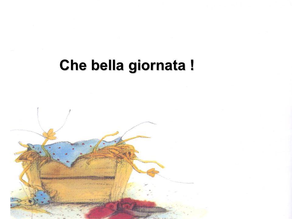 Paolino lancia il bastone e distrugge gli animaletti fatti di pigne costruiti da Violetta Paolino lancia il bastone e distrugge gli animaletti fatti di pigne costruiti da Violetta
