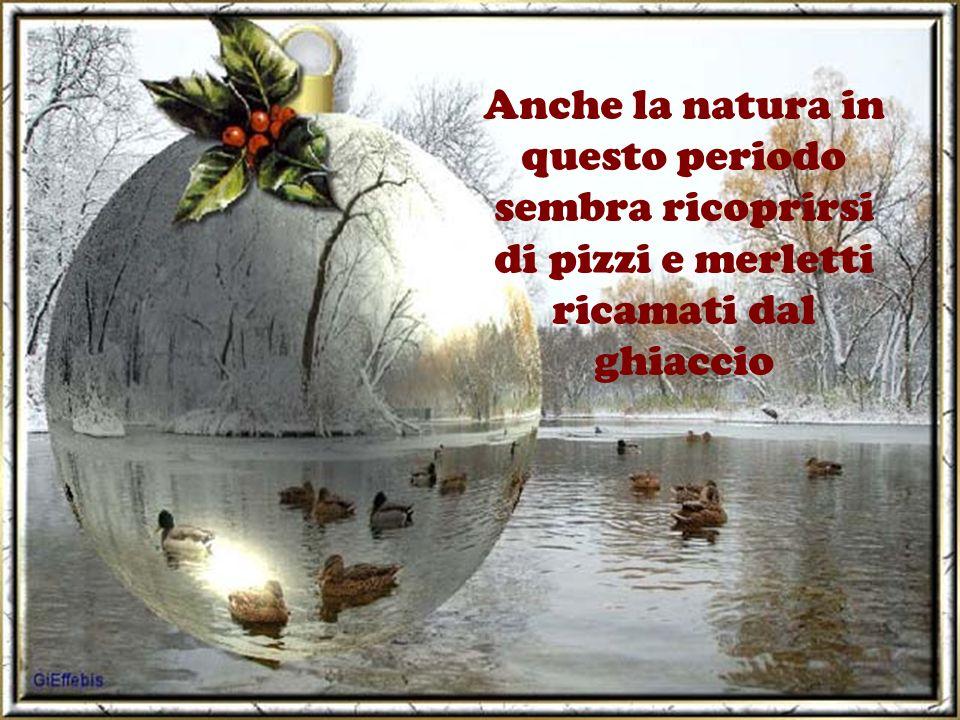 Anche la natura in questo periodo sembra ricoprirsi di pizzi e merletti ricamati dal ghiaccio