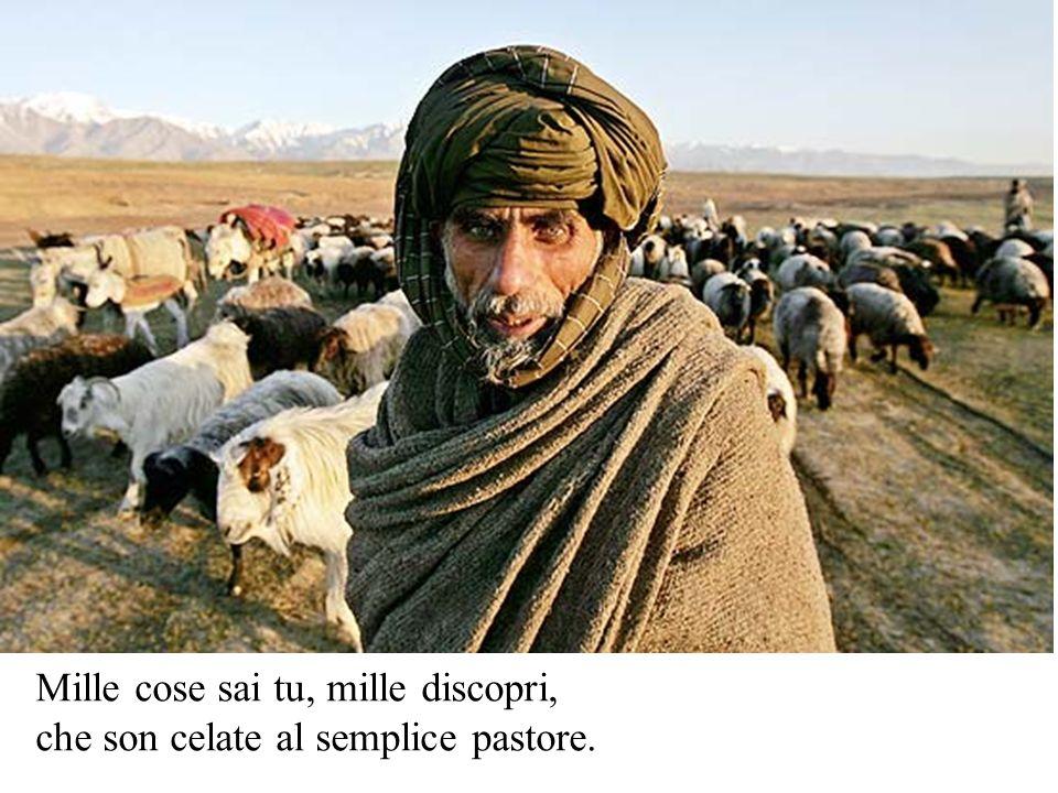 Mille cose sai tu, mille discopri, che son celate al semplice pastore.