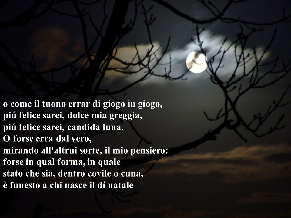 o come il tuono errar di giogo in giogo, piú felice sarei, dolce mia greggia, piú felice sarei, candida luna.