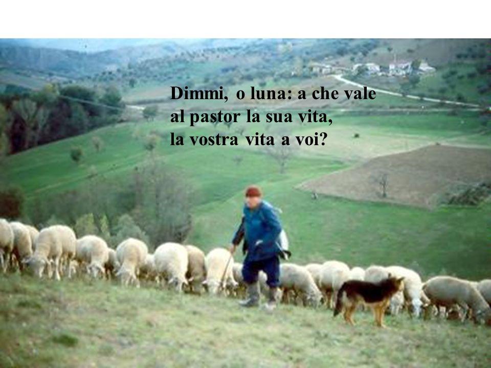 Dimmi, o luna: a che vale al pastor la sua vita, la vostra vita a voi?