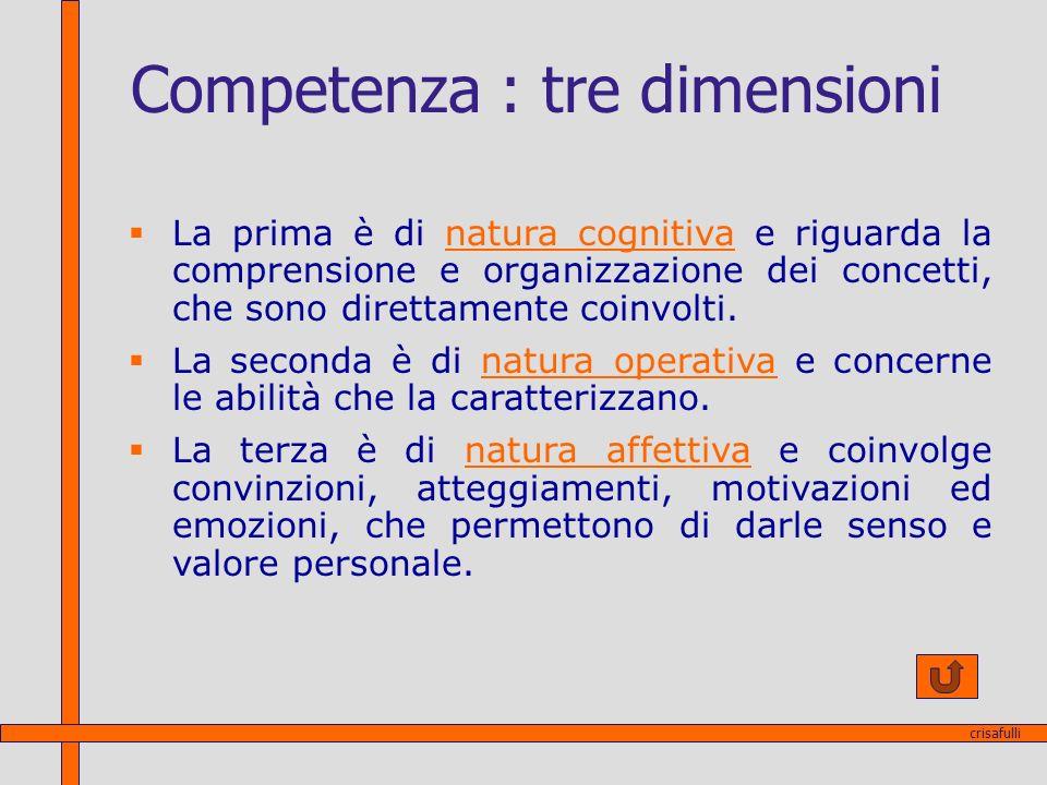 Competenza : tre dimensioni La prima è di natura cognitiva e riguarda la comprensione e organizzazione dei concetti, che sono direttamente coinvolti.