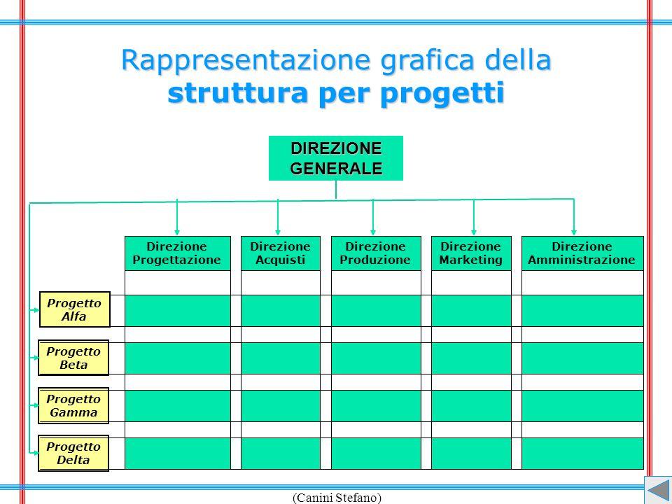 (Canini Stefano) Rappresentazione grafica della struttura per progetti DIREZIONEGENERALE Direzione Progettazione Direzione Acquisti Direzione Produzio
