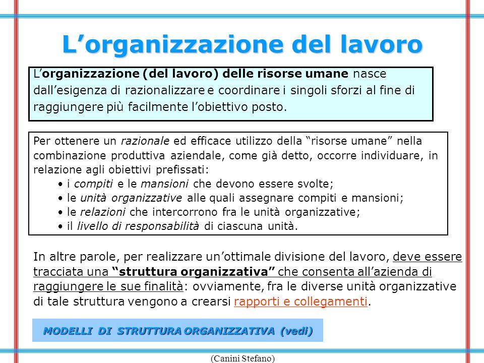 (Canini Stefano) Lorganizzazione del lavoro Lorganizzazione (del lavoro) delle risorse umane nasce dallesigenza di razionalizzare e coordinare i singo