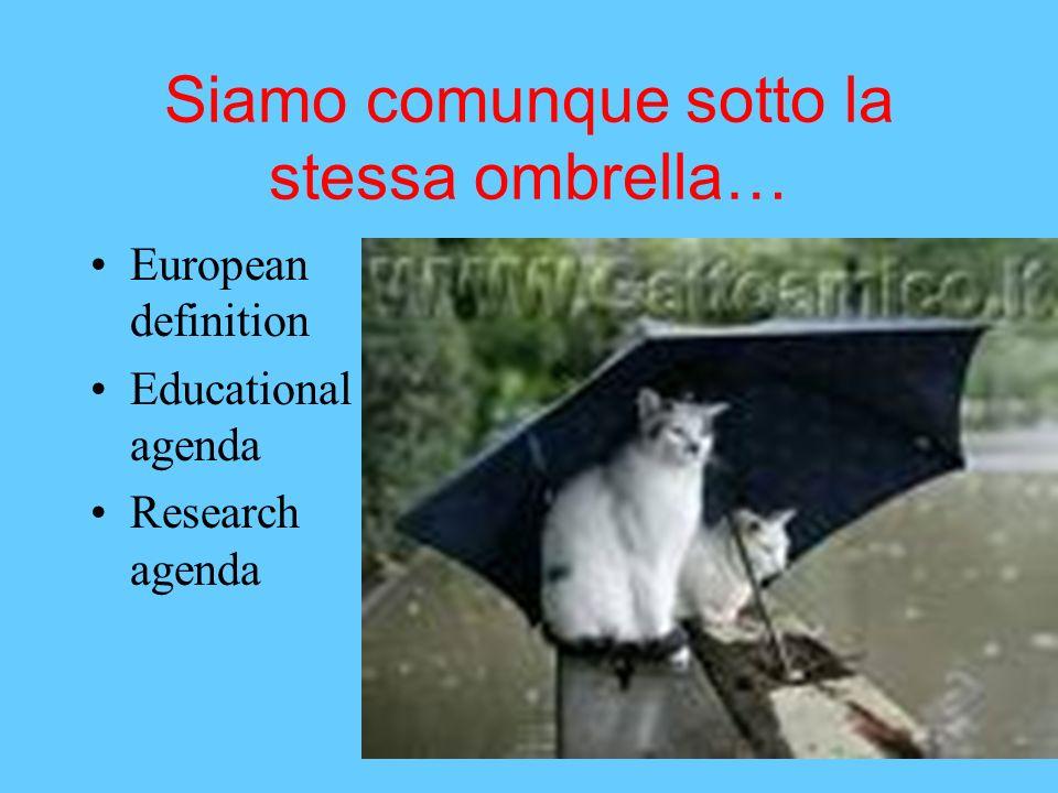 Siamo comunque sotto la stessa ombrella… European definition Educational agenda Research agenda