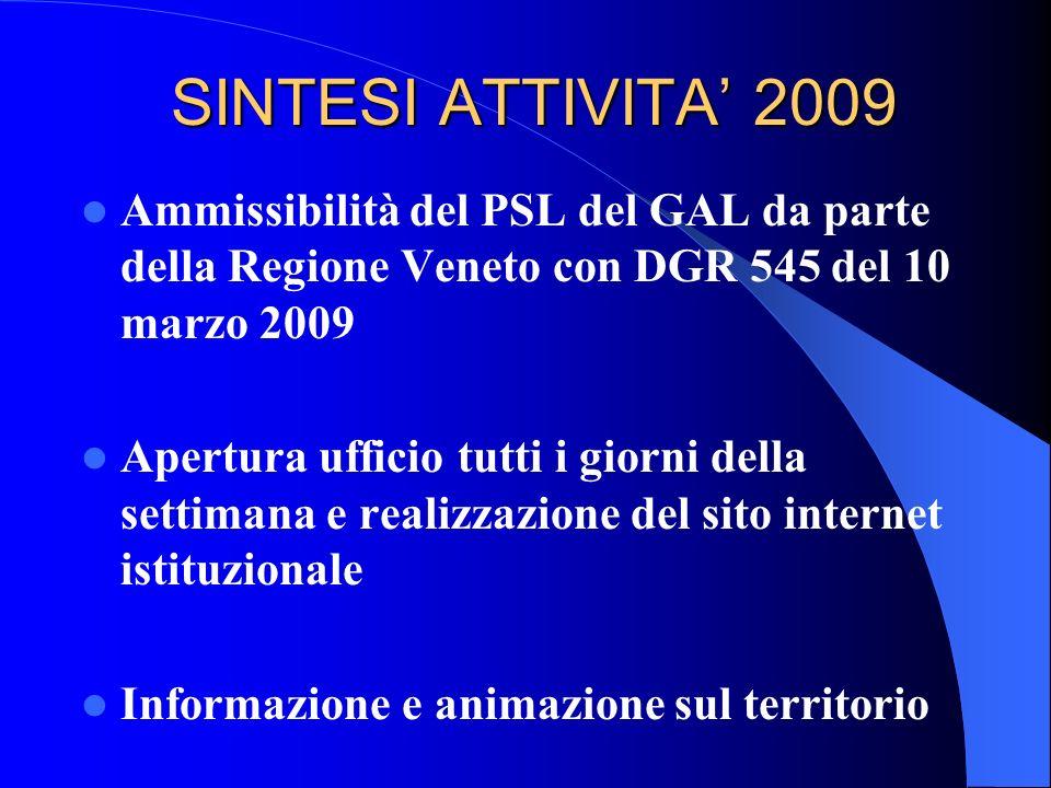 (segue) SINTESI ATTIVITA 2009 Predisposizione primi bandi del PSL sulla base delle Linee Guida regionali Gestione dellIPA Terre Alte per il Comune di Pieve di Soligo Supporto ai Soci nella presentazione di domande di contributo su bandi regionali extra PSR Veneto