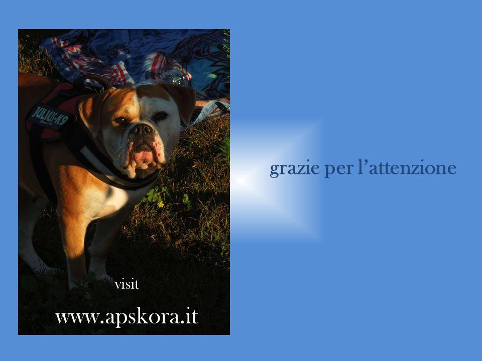 grazie per lattenzione visit www.apskora.it