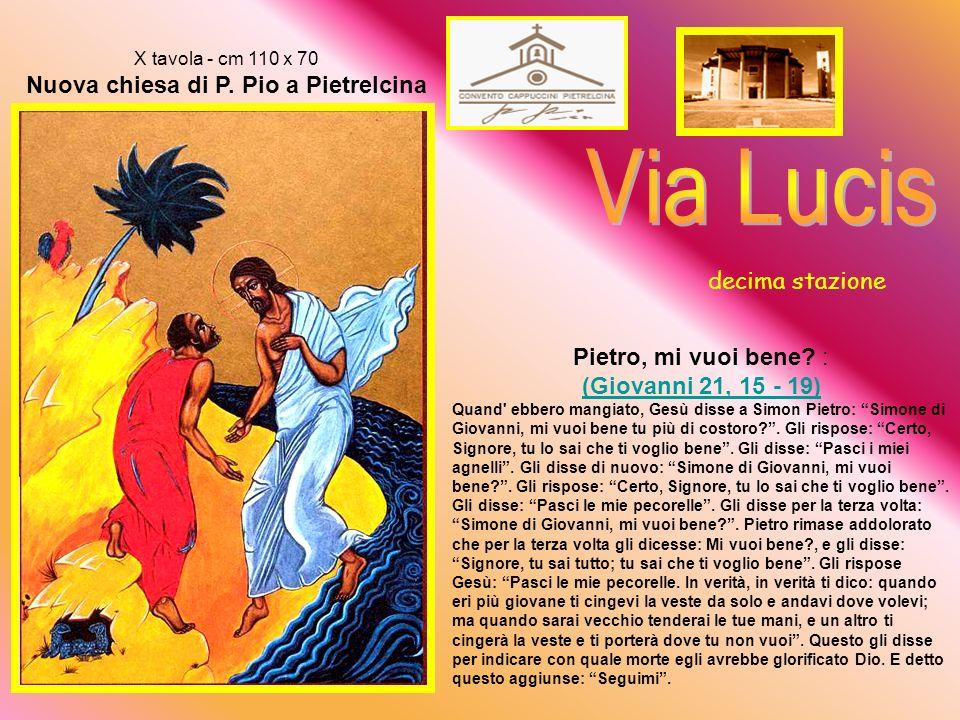 IX tavola - cm 110 x 70 Nuova chiesa di P.