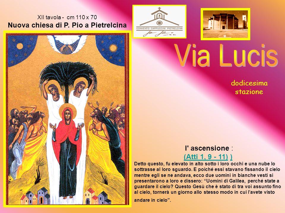 XI tavola - cm 110 x 70 Nuova chiesa di P.
