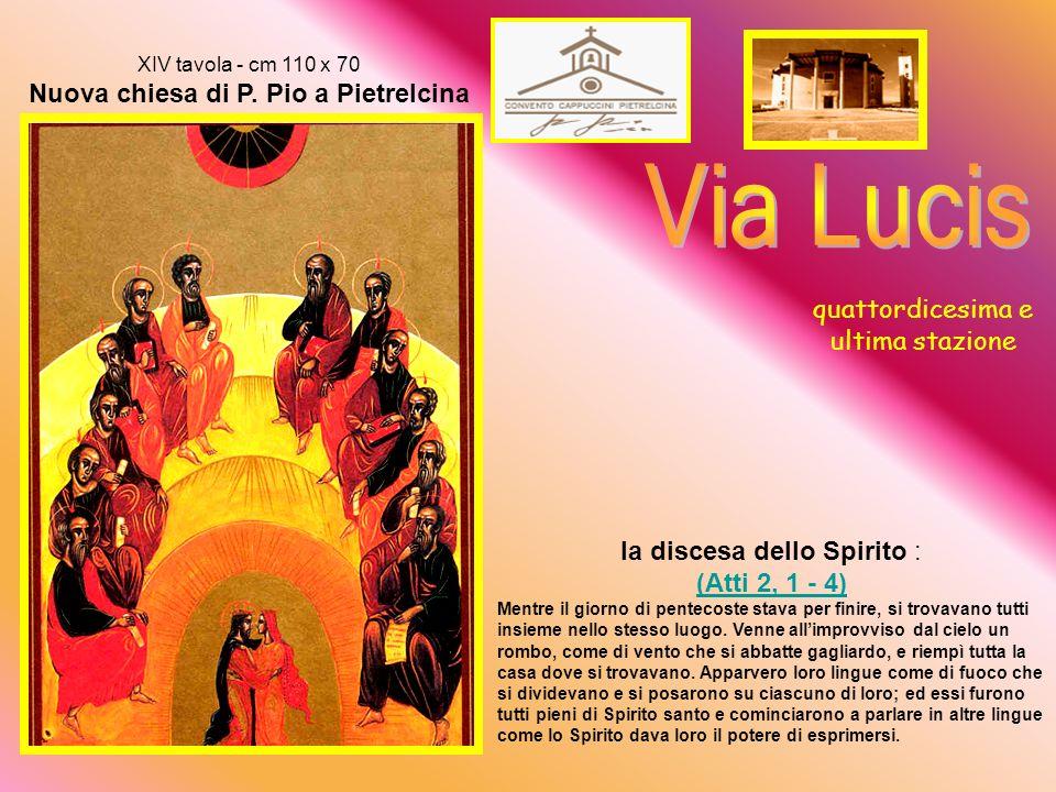 XIII tavola - cm 110 x 70 Nuova chiesa di P.
