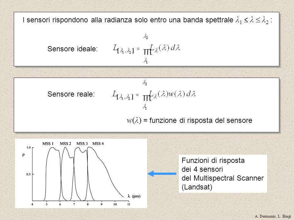 Funzioni di risposta dei 4 sensori del Multispectral Scanner (Landsat) Sensore reale: w(λ) = funzione di risposta del sensore I sensori rispondono all