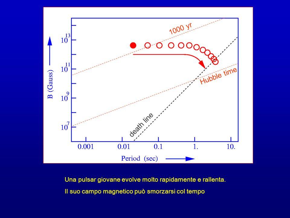 Una pulsar giovane evolve molto rapidamente e rallenta. Il suo campo magnetico può smorzarsi col tempo 1000 yr death line Hubble time