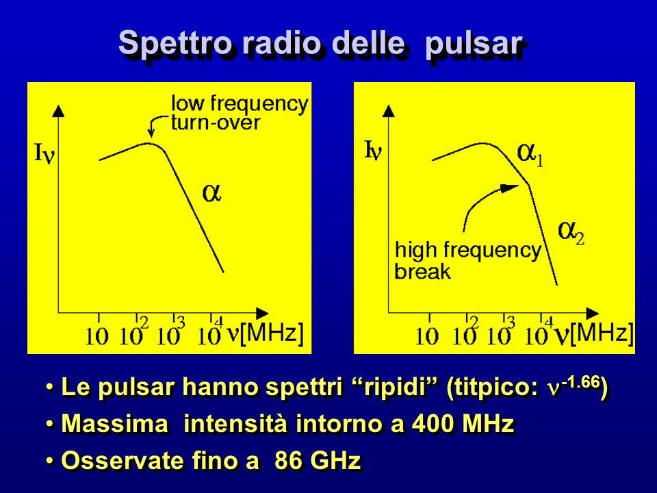 Spettro radio delle pulsar Le pulsar hanno spettri ripidi (titpico: -1.66 ) Le pulsar hanno spettri ripidi (titpico: -1.66 ) Massima intensità intorno