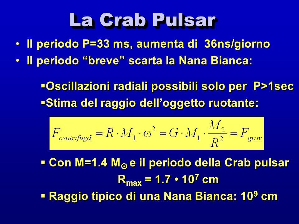 La Crab Pulsar Il periodo P=33 ms, aumenta di 36ns/giornoIl periodo P=33 ms, aumenta di 36ns/giorno Il periodo breve scarta la Nana Bianca:Il periodo