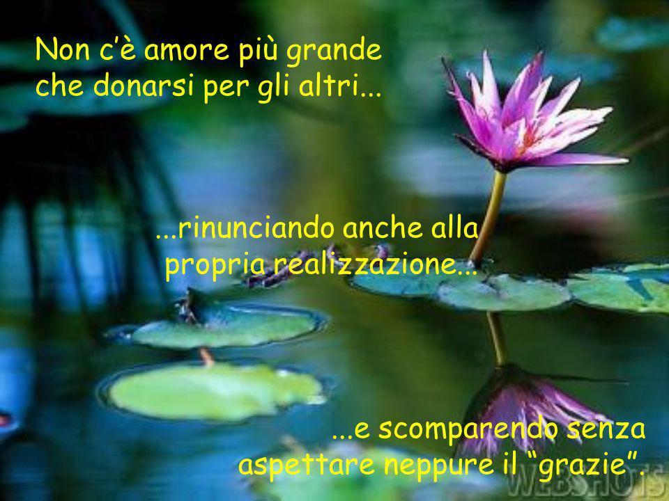 Non cè amore più grande che donarsi per gli altri......rinunciando anche alla propria realizzazione......e scomparendo senza aspettare neppure il graz