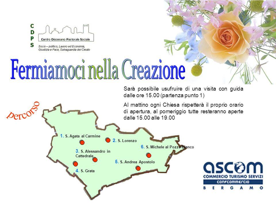FIORISTI ASCOM Edizione 2008 Vacchelli Adriano (Osio Sotto) Floricoltura Moretti (Gorle) Fiorista Finardi (Castel Rozzone) Fioreria Amadei (Azzano S.