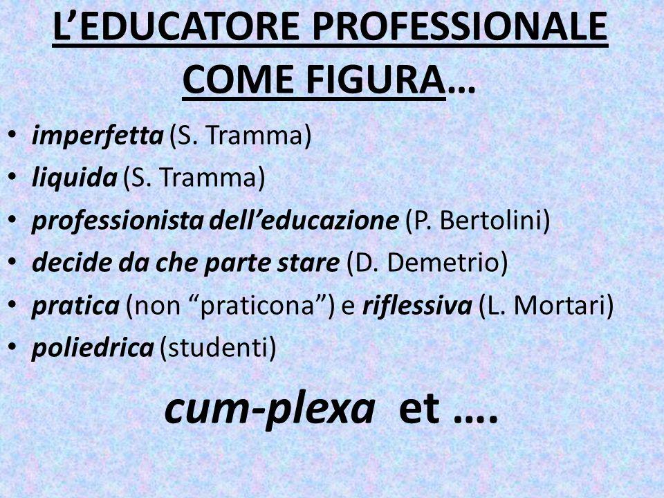 LEDUCATORE PROFESSIONALE COME FIGURA… imperfetta (S.