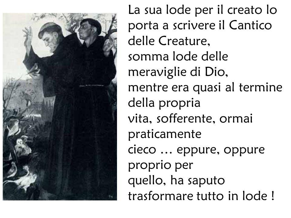 La sua lode per il creato lo porta a scrivere il Cantico delle Creature, somma lode delle meraviglie di Dio, mentre era quasi al termine della propria