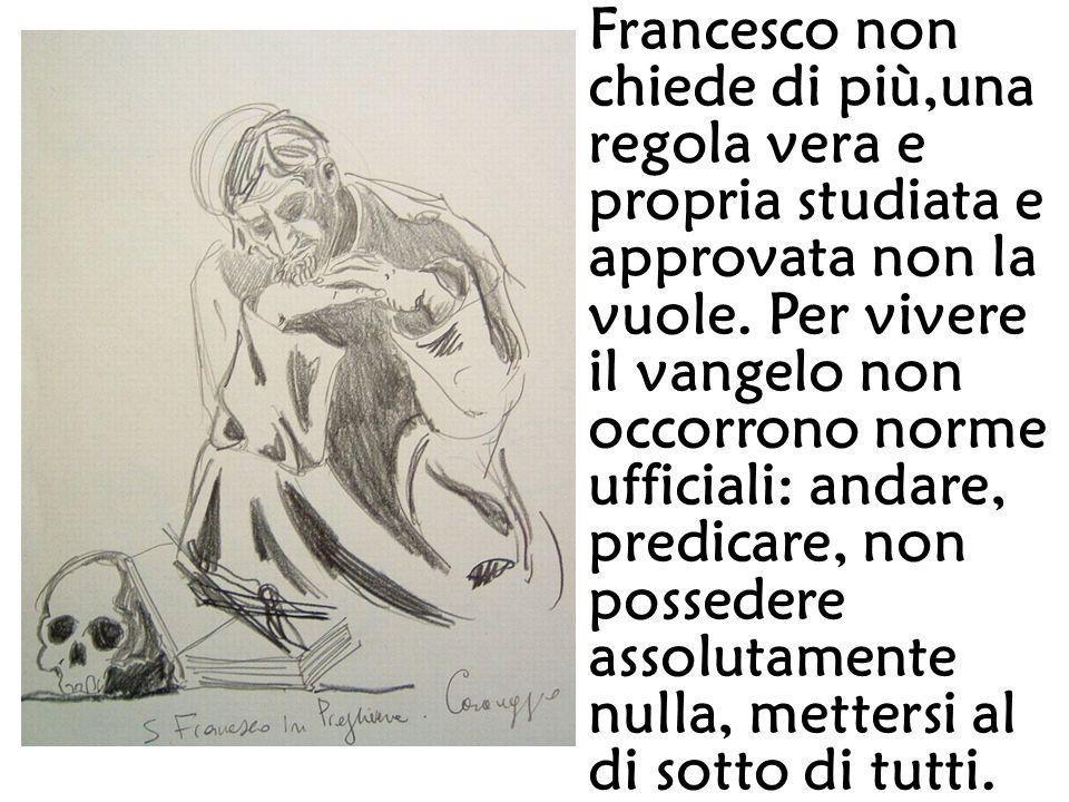 Francesco non chiede di più,una regola vera e propria studiata e approvata non la vuole.