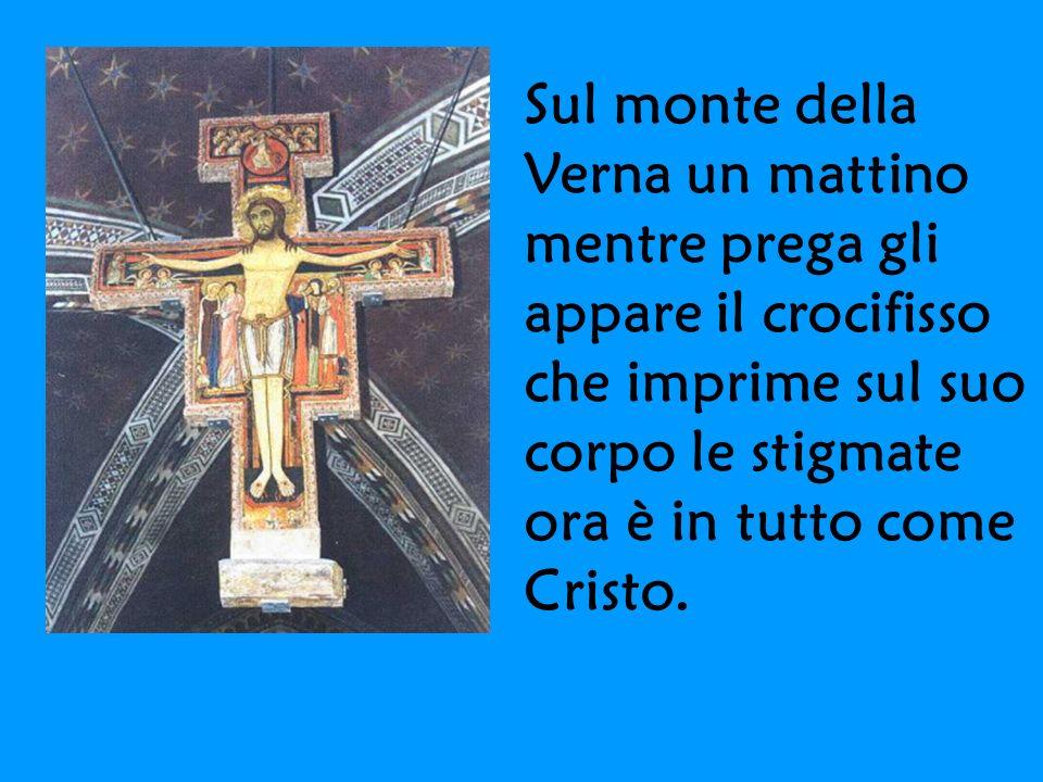 Sul monte della Verna un mattino mentre prega gli appare il crocifisso che imprime sul suo corpo le stigmate ora è in tutto come Cristo.