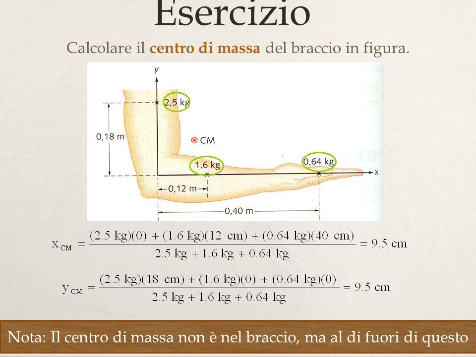 18 Esercizio Calcolare il centro di massa del braccio in figura. Nota: Il centro di massa non è nel braccio, ma al di fuori di questo