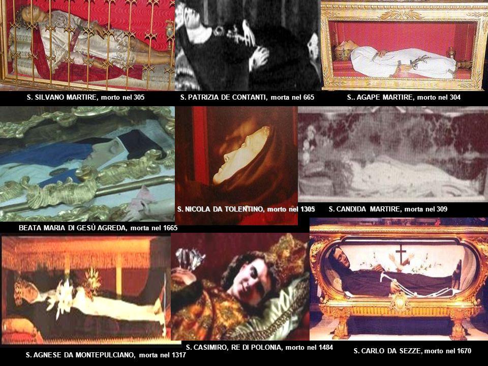SAN CAYETANO CATANOSO, morto nel 1963 S. MARIA GORETTI, morta nel 1902 BEATA MARIA CRESCENZIA PEREZ, il suo corpo, seduto, è tuttora flessible dal gio