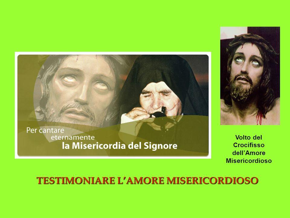 TESTIMONIARE LAMORE MISERICORDIOSO Volto del Crocifisso dellAmore Misericordioso