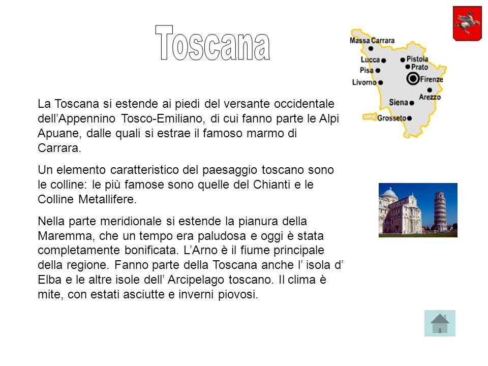 La Toscana si estende ai piedi del versante occidentale dellAppennino Tosco-Emiliano, di cui fanno parte le Alpi Apuane, dalle quali si estrae il famoso marmo di Carrara.