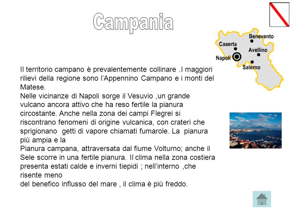 Il territorio campano è prevalentemente collinare.I maggiori rilievi della regione sono lAppennino Campano e i monti del Matese.
