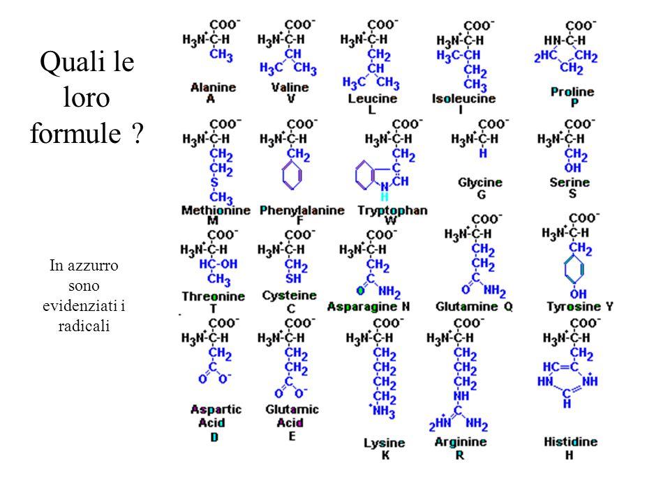Quali le loro formule ? In azzurro sono evidenziati i radicali