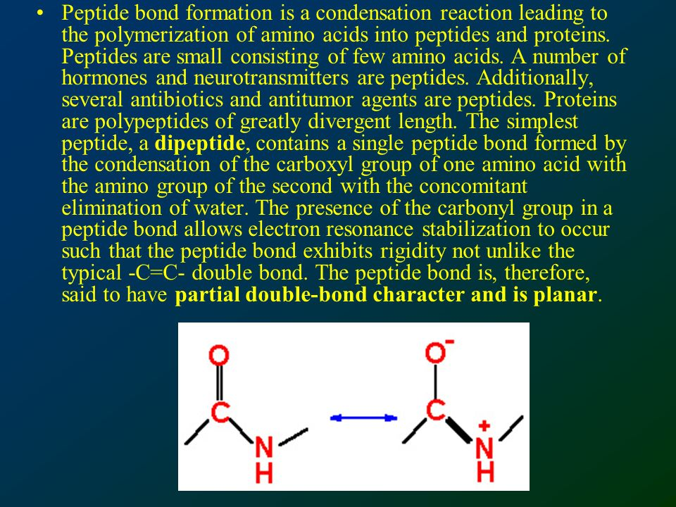 Peptide bond formation is a condensation reaction leading to the polymerization of amino acids into peptides and proteins.