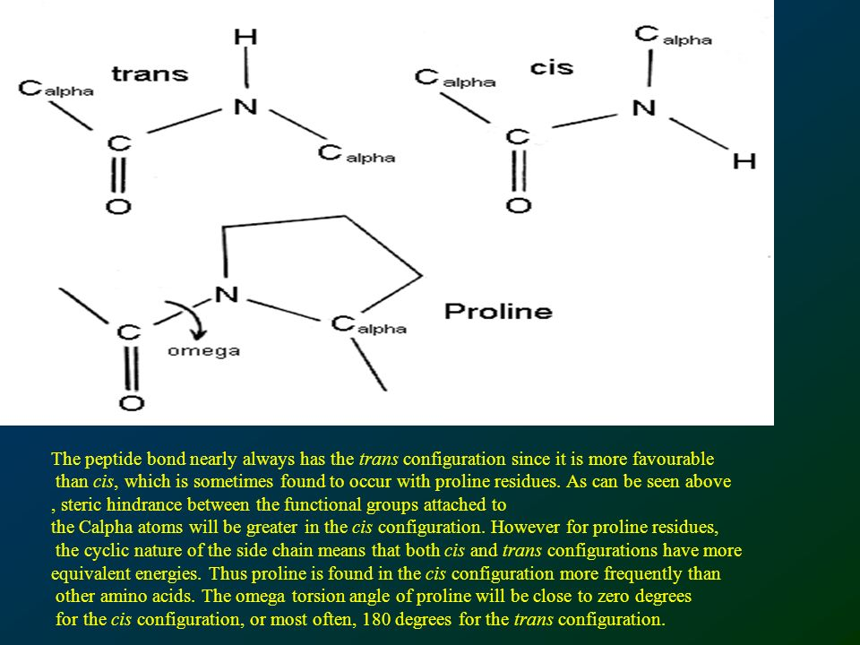 The peptide bond nearly always has the trans configuration since it is more favourable than cis, which is sometimes found to occur with proline residues.