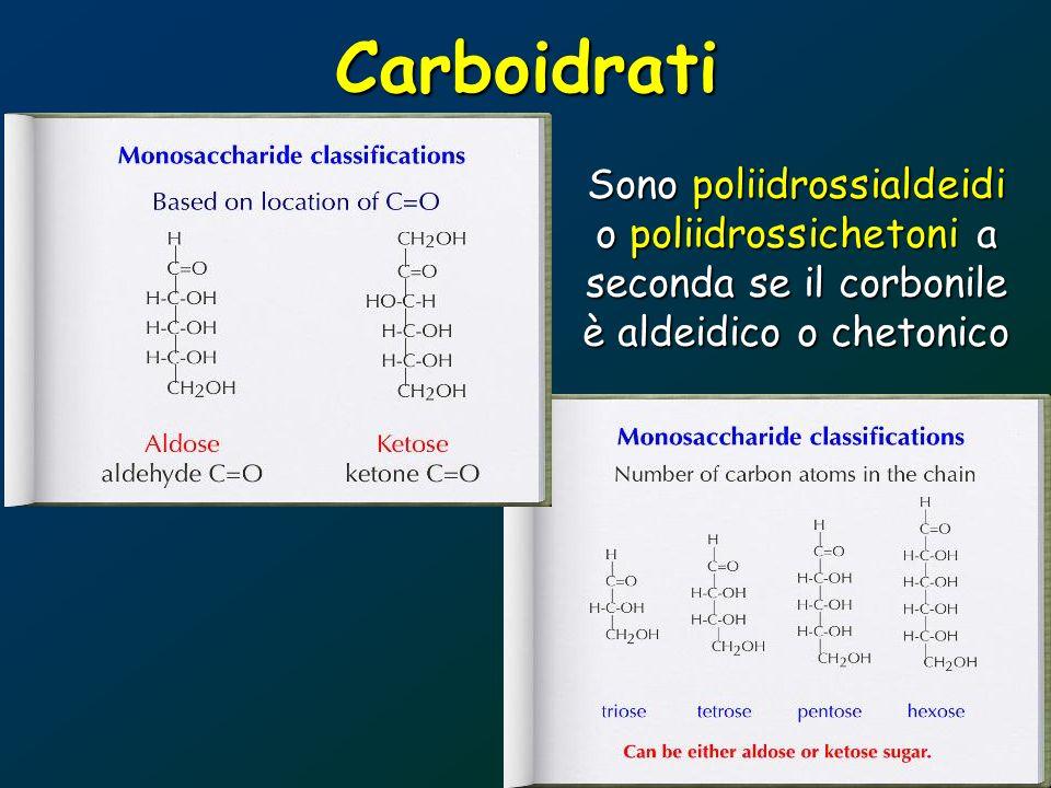 Carboidrati Sono poliidrossialdeidi o poliidrossichetoni a seconda se il corbonile è aldeidico o chetonico