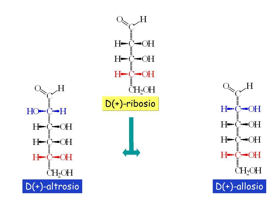 D(+)-altrosioD(+)-allosio D(+)-ribosio