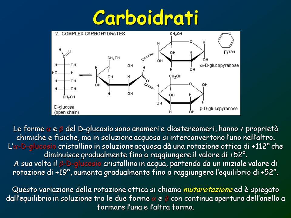 Carboidrati Le forme e del D-glucosio sono anomeri e diastereomeri, hanno proprietà chimiche e fisiche, ma in soluzione acquosa si interconvertono lun