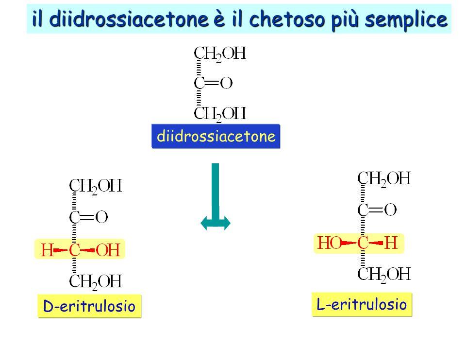 D-eritrulosio il diidrossiacetone è il chetoso più semplice L-eritrulosio diidrossiacetone