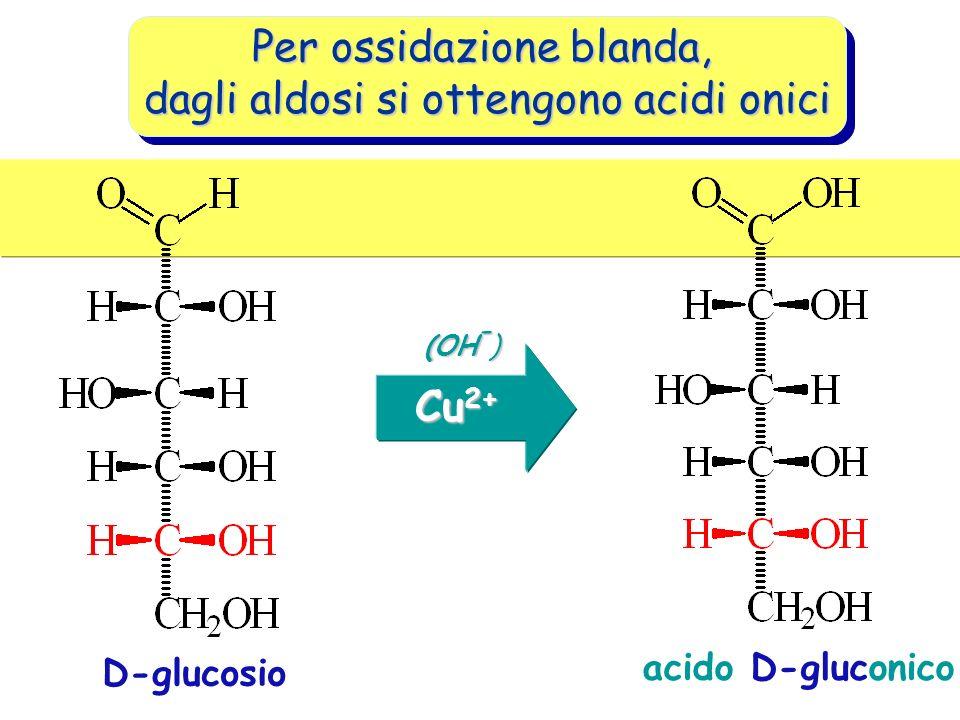 Per ossidazione blanda, dagli aldosi si ottengono acidi onici D-glucosio (OH - ) acido D-gluconico Cu 2+