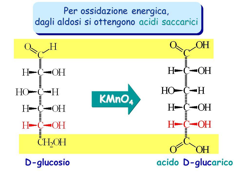 Per ossidazione energica, dagli aldosi si ottengono acidi saccarici acido D-glucaricoD-glucosio KMnO 4