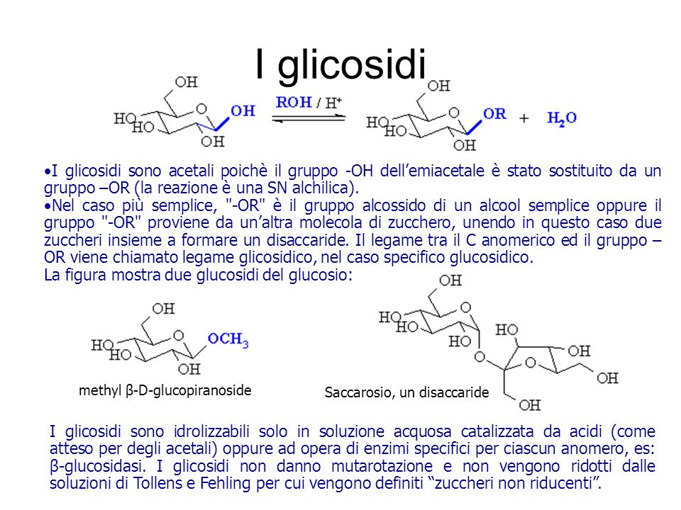 I glicosidi I glicosidi sono acetali poichè il gruppo -OH dellemiacetale è stato sostituito da un gruppo –OR (la reazione è una SN alchilica). Nel cas