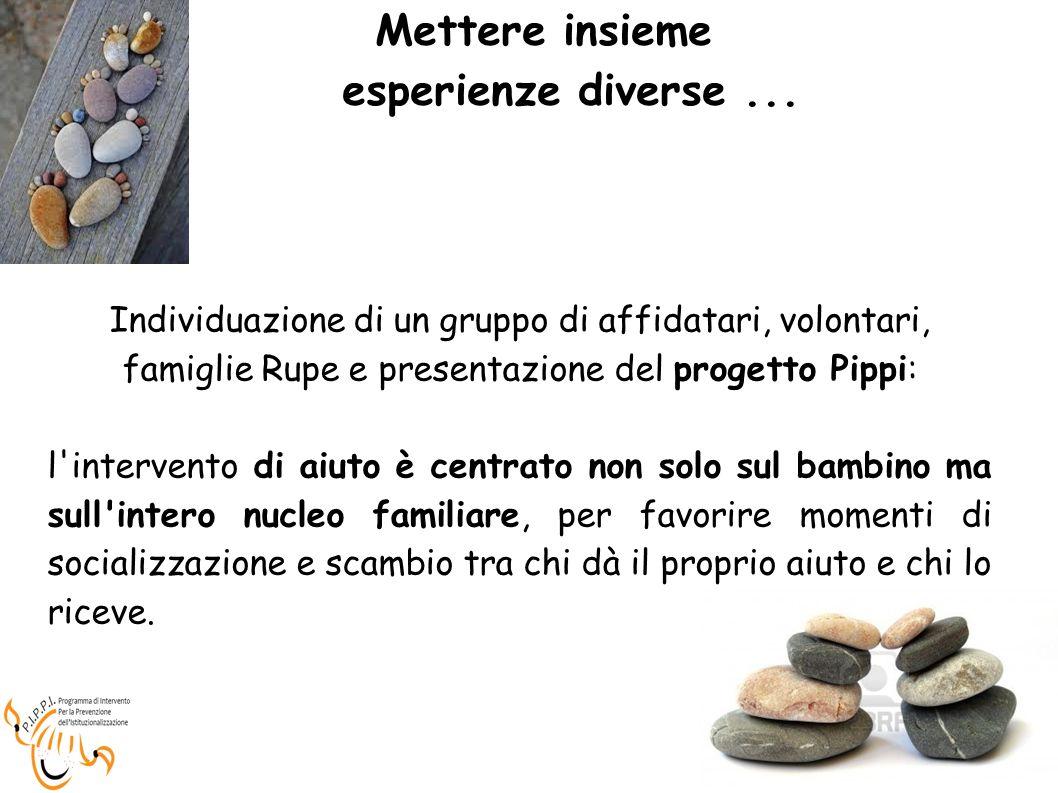 Mettere insieme esperienze diverse... Individuazione di un gruppo di affidatari, volontari, famiglie Rupe e presentazione del progetto Pippi: l'interv