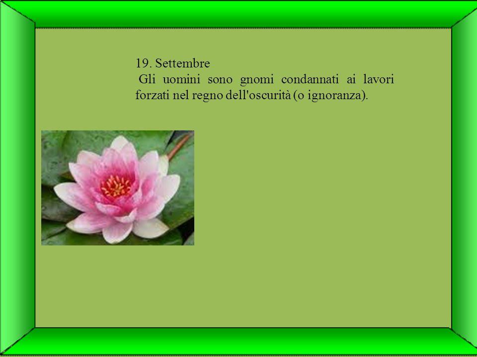 29. Settembre Tutta l aria riecheggia della presenza dello spirito e delle leggi spirituali.