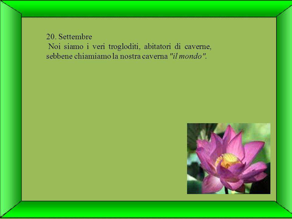 19. Settembre Gli uomini sono gnomi condannati ai lavori forzati nel regno dell'oscurità (o ignoranza).