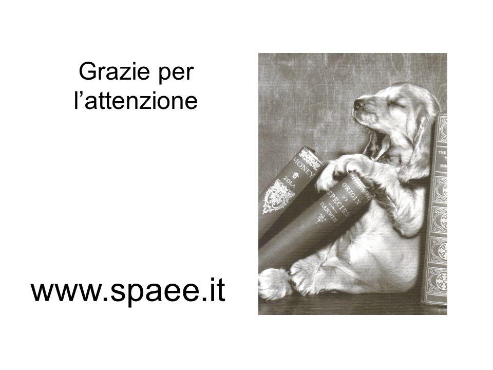 www.spaee.it Grazie per lattenzione