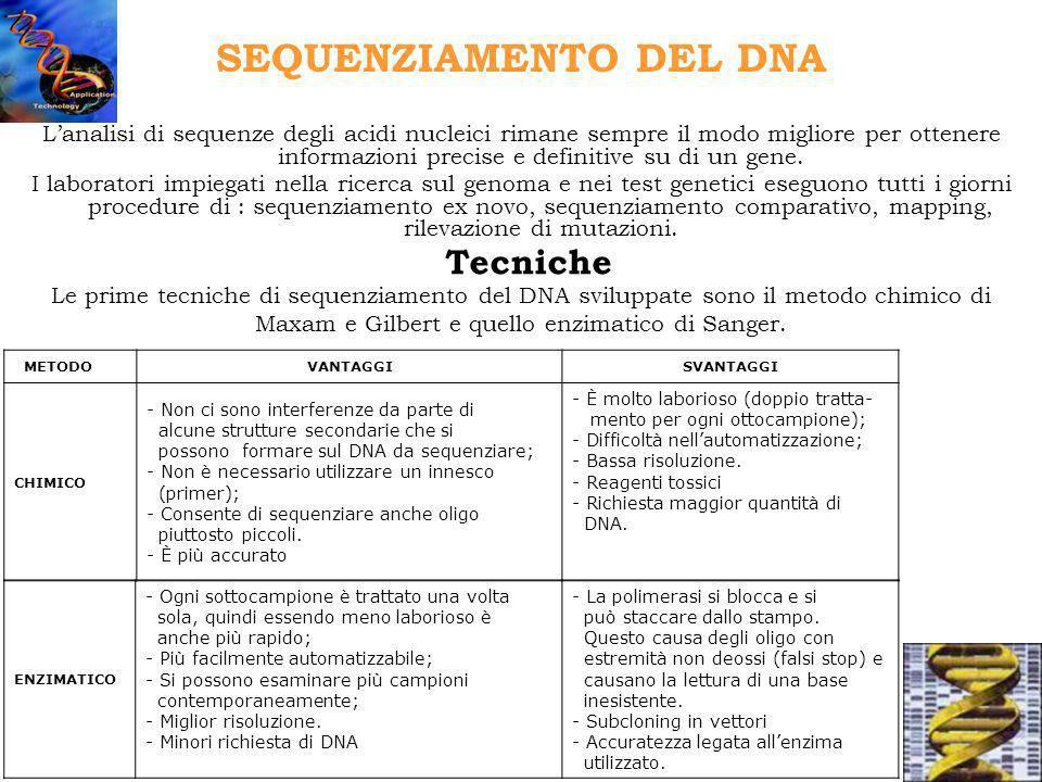 Il sequenziamento affidabile dei prodotti di PCR si ottiene con il cycle sequencing.