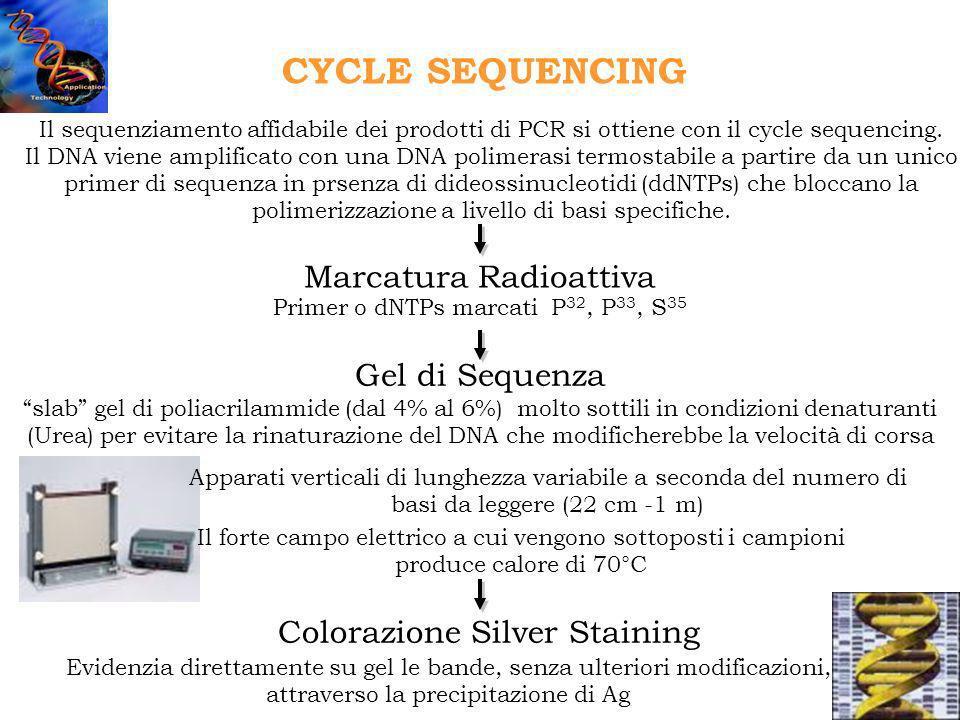 Il sequenziamento affidabile dei prodotti di PCR si ottiene con il cycle sequencing. Il DNA viene amplificato con una DNA polimerasi termostabile a pa