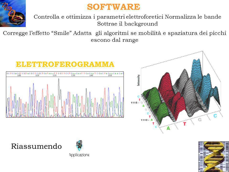 Mapping Tecnica del Chromosome Walking Sequenziamento di Library Progetto Genoma APPLICAZIONI SEQUENZIAMENTO Sequenziamento Ex Novo Uso di Primers Universali Es.
